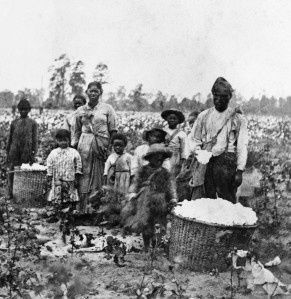 ca. 1860s, Near Savannah, Georgia, USA --- Slave Family In Cotton Field near Savannah --- Image by © Bettmann/CORBIS